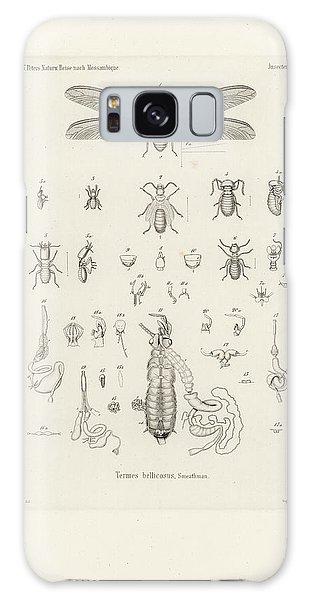 Termites, Macrotermes Bellicosus Galaxy Case