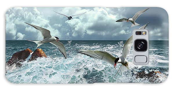 Terns In The Surf Galaxy Case