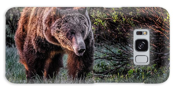 Teton Grizzly Galaxy Case