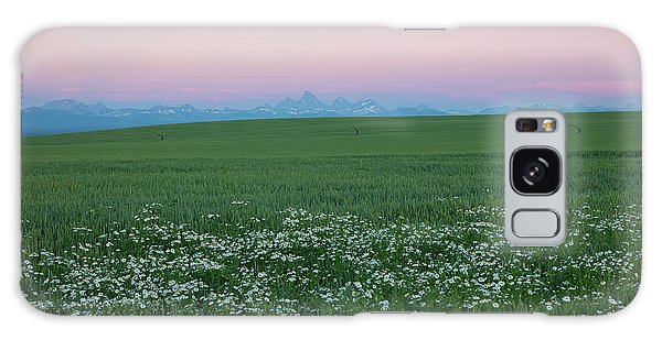 Tetons With Daisies Galaxy Case