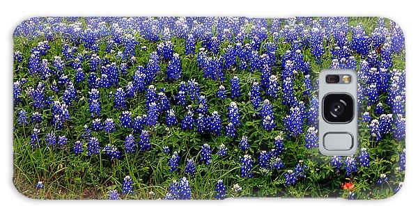 Texas Bluebonnets #0484 Galaxy Case by Barbara Tristan
