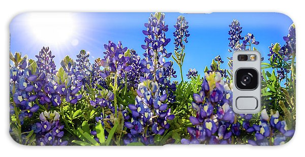 Texas Bluebonnets Backlit II Galaxy Case