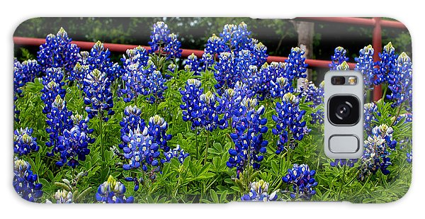 Texas Bluebonnets In Ennis Galaxy Case