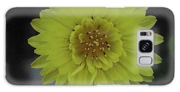 Texas Dandelion Galaxy Case by Robyn Stacey