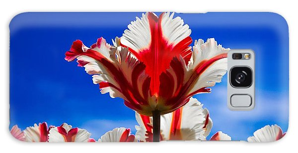 Texas Flame Parrot Tulip Galaxy Case by John Roberts