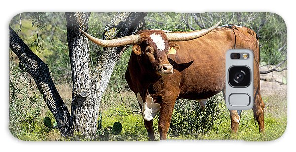 Galaxy Case featuring the photograph Texas Longhorn Steer by David Morefield