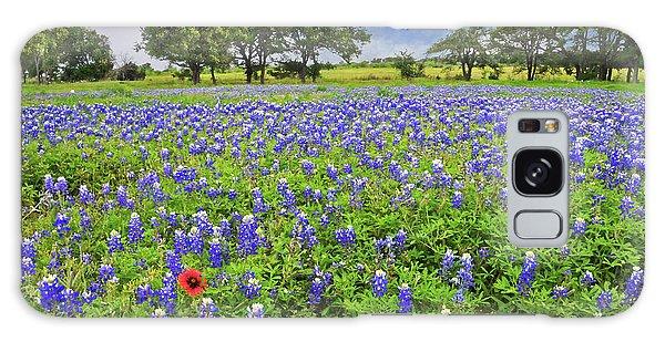 Texas Spring  Galaxy Case