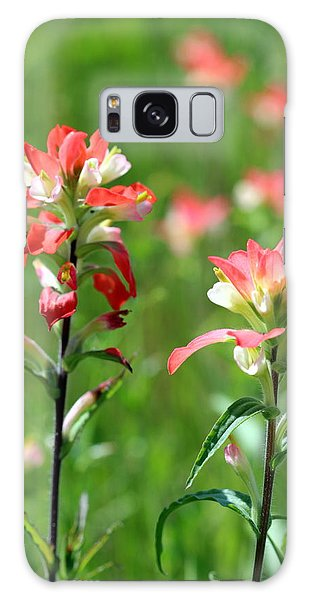 Texas Wildflowers Galaxy Case