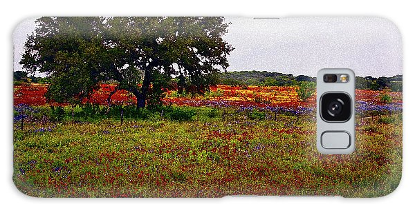 Texas Wildflowers Galaxy Case