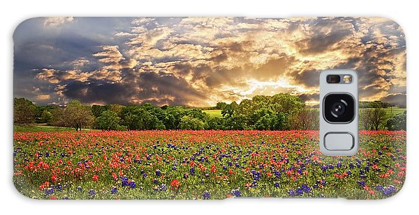 Texas Wildflowers Under Sunset Skies Galaxy Case