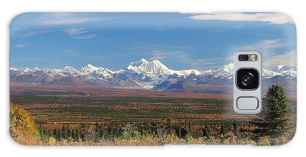 The Alaska Range From The Denali Highway Galaxy Case