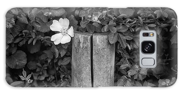 The Allotment Project - Dog Rose Galaxy Case