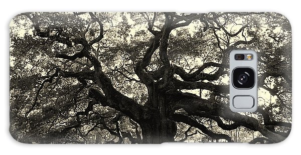 The Angel Oak Galaxy Case