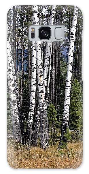 Galaxy Case featuring the photograph The Aspens by John Gilbert