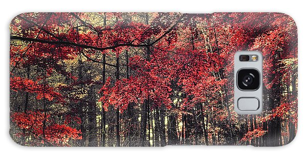 The Autumn Colors Galaxy Case