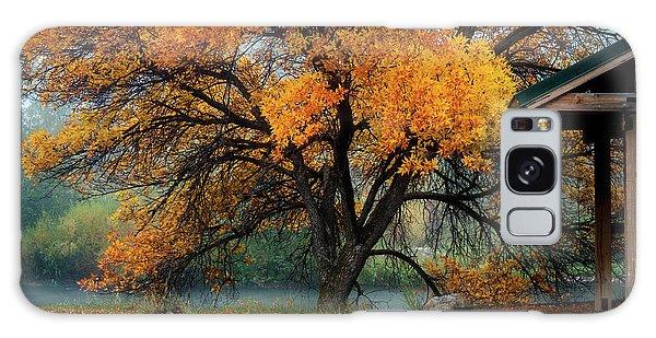 The Autumn Tree Galaxy Case