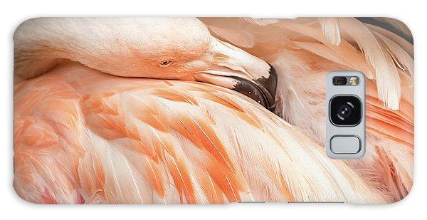 The Beautiful Flamingo Galaxy Case