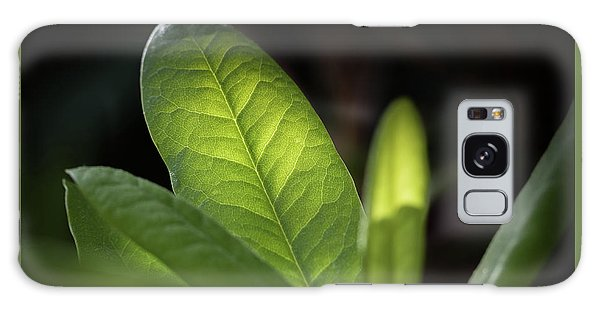 The Beauty Of A Leaf - Galaxy Case
