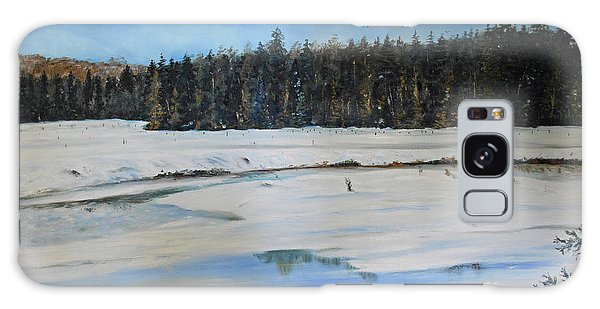 The Beaver Pond In Winter Galaxy Case