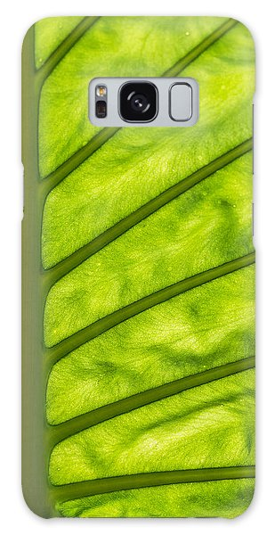 The Big Leaf Galaxy Case