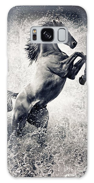 The Black Stallion Arabian Horse Reared Up Galaxy Case