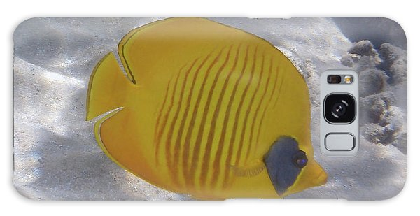 The Bluecheeked Butterflyfish Red Sea Galaxy Case