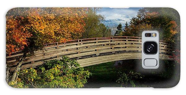 The Bridge To The Garden Galaxy Case