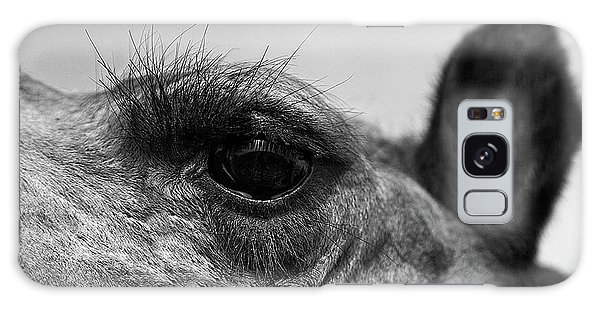 The Camels Eye  Galaxy Case