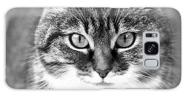 The Cat Stare Down Galaxy Case