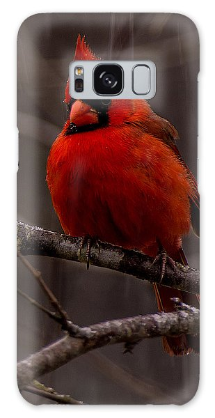 The Crimson Suit Galaxy Case
