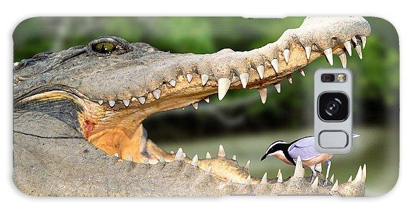 The Crocodile Bird Galaxy Case
