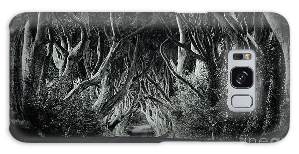 The Dark Hedges Galaxy Case