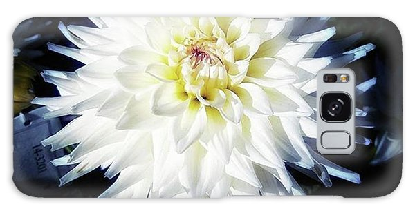 Galaxy Case featuring the photograph The Devoted Dahlia. The White Dahlia by Mr Photojimsf