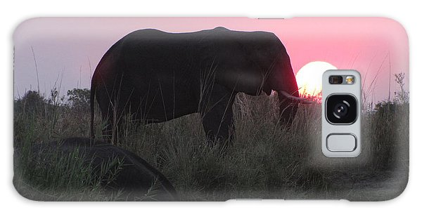The Elephant And The Sun Galaxy Case