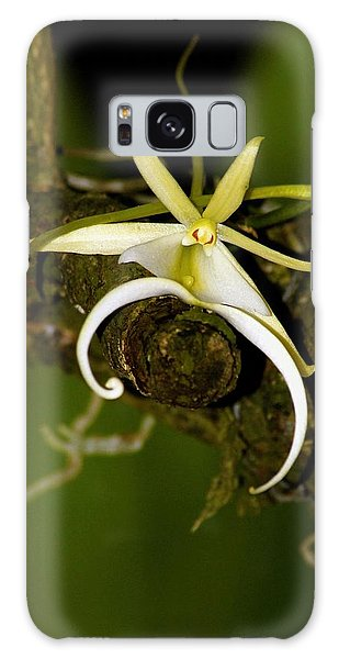 The Elusive And Rare Ghost Orchid Galaxy Case