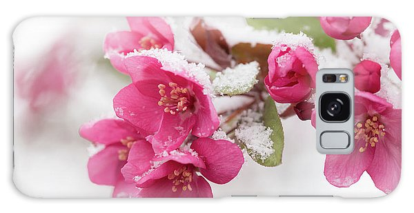 Galaxy Case featuring the photograph The End Of Winter by Ana V Ramirez
