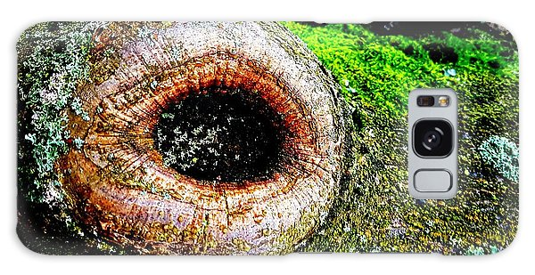 The Eye In The Tree Galaxy Case