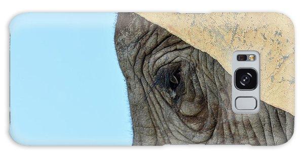 The Eye Of An Elephant Galaxy Case
