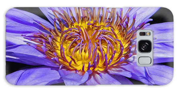 The Eye Of The Water Lily Galaxy Case