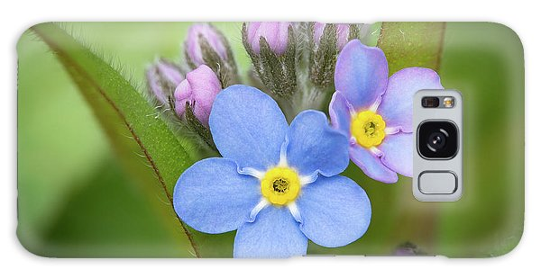 The First Blossom Of The Forget Me Not Galaxy Case