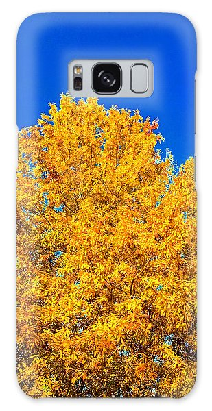 The Flare Of Fall On A Clear Day Galaxy Case