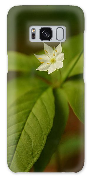 The Flower Of The Dark Woods Galaxy Case