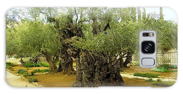 The Garden Of Gethsemane Galaxy Case