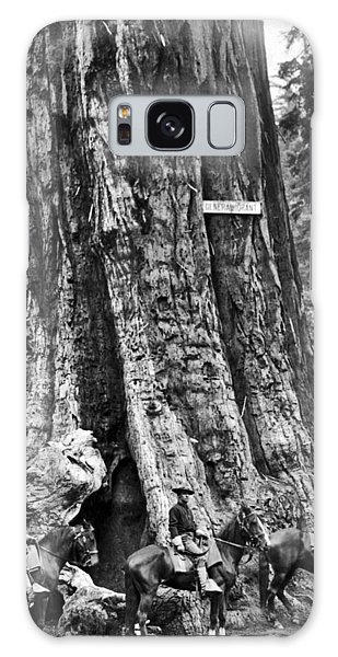 Kings Canyon Galaxy Case - The General Grant Tree by Underwood Archives