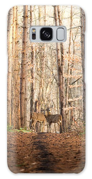 White-tailed Deer Galaxy Case - The Gift by Everet Regal