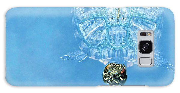 The Glass Turtle Galaxy Case