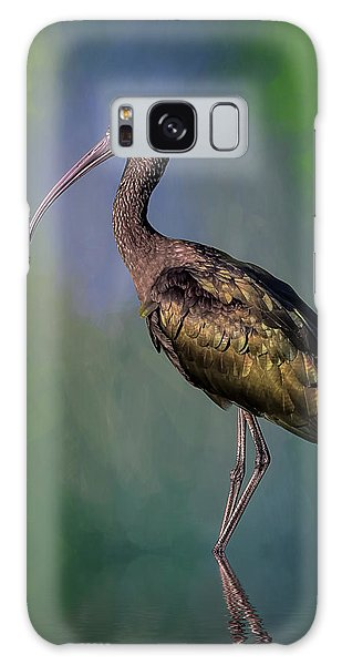 The Glossy Ibis Stroll Galaxy Case