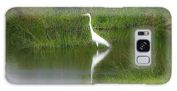 Great Egret By The Waters Edge Galaxy Case