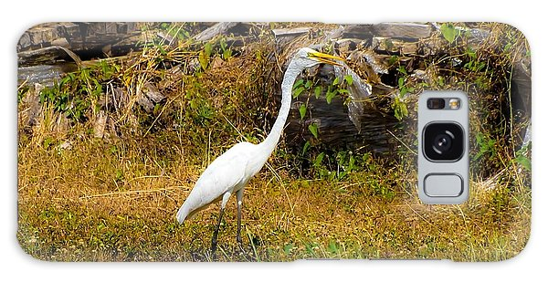 Egret Against Driftwood Galaxy Case