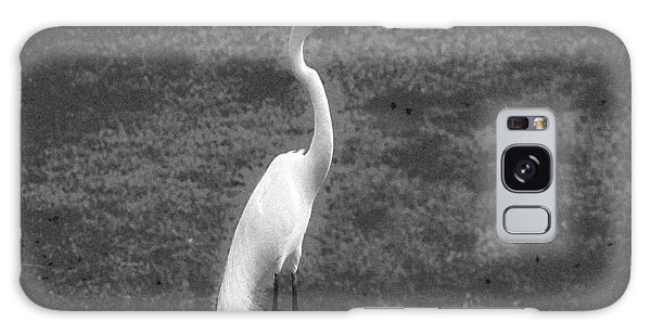 The Great Egret Galaxy Case